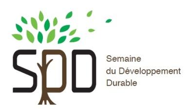 logo sdd ig2e.jpg